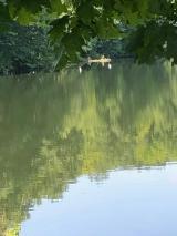 <p>Quiet afternoon by Joe Valastro</p>